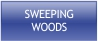 Sweeping Woods